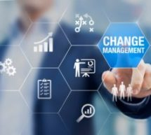 What to Expect From an Organizational Change Management Consultant